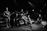 Pearl Jam: Live at Madison Square Garden (Review)